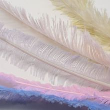 Long Cut Peach Ostrich Feather